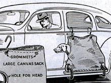 Самые дурацкие автогаджеты: пристяжная сумка для собаки и самозатягивающийся ремень для водителя